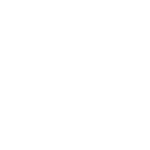 bluedog-guitars