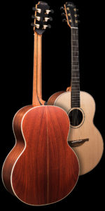 The FM Model Guitar Back