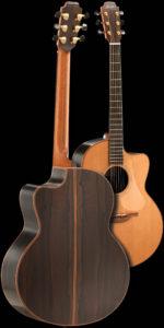 img-guitar-thompson-back