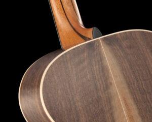 Barintone Guitar Detail